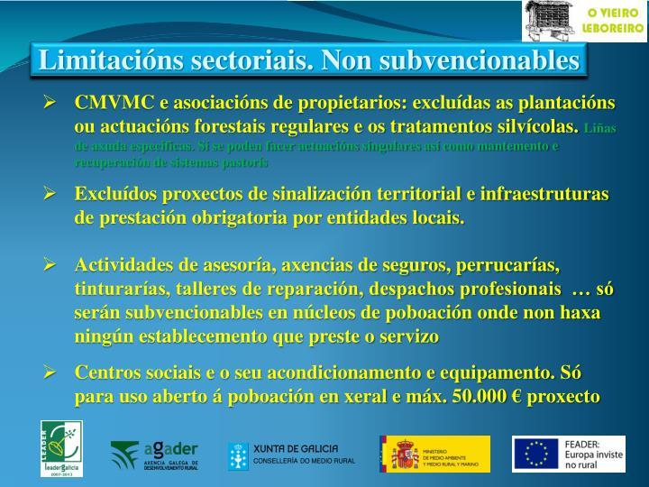 Limitacións sectoriais. Non subvencionables