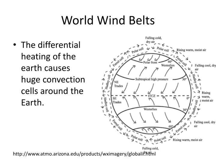 World Wind Belts