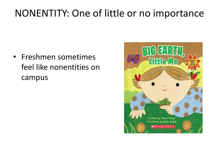 NONENTITY: One of little or no importance