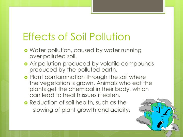 Effects of Soil Pollution