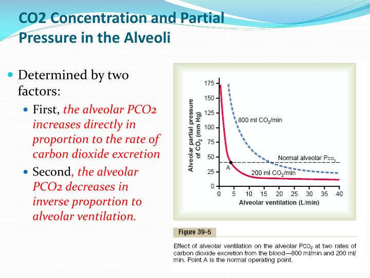 CO2 Concentration and Partial