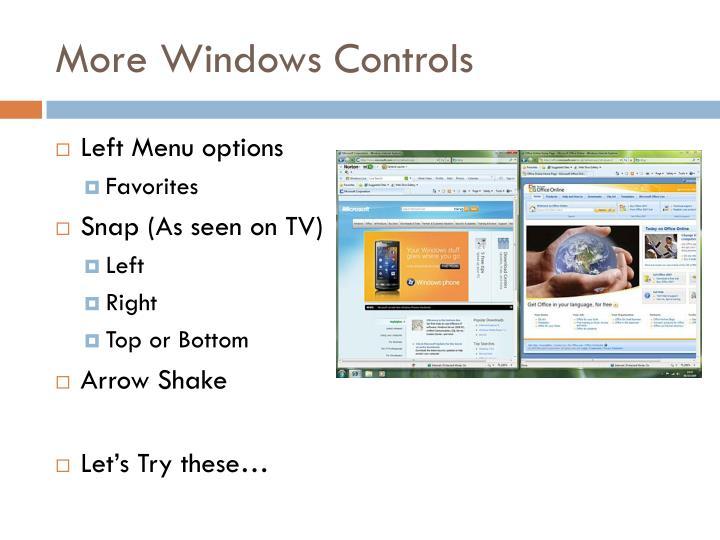 More Windows Controls