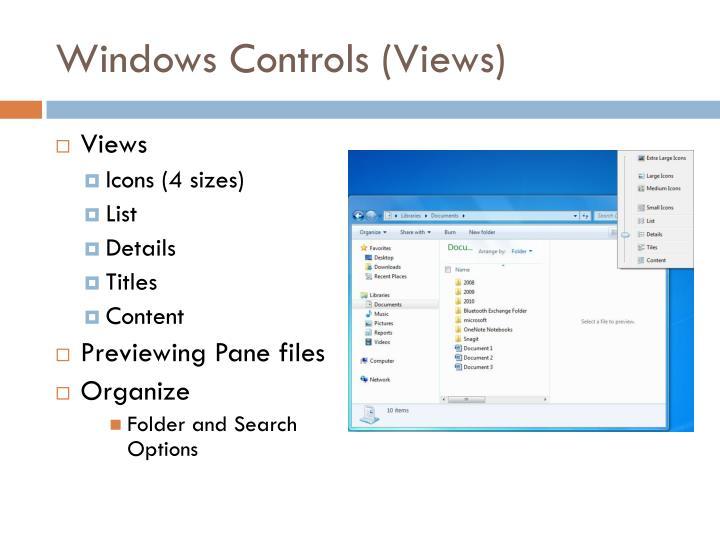 Windows Controls (Views)