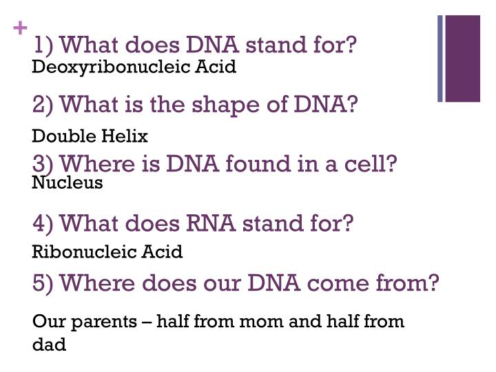 1) What does DNA stand for?