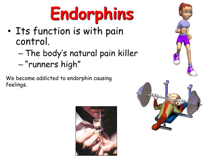 Which Neurotransmitter S Is Are The Body S Natural Pain Killer