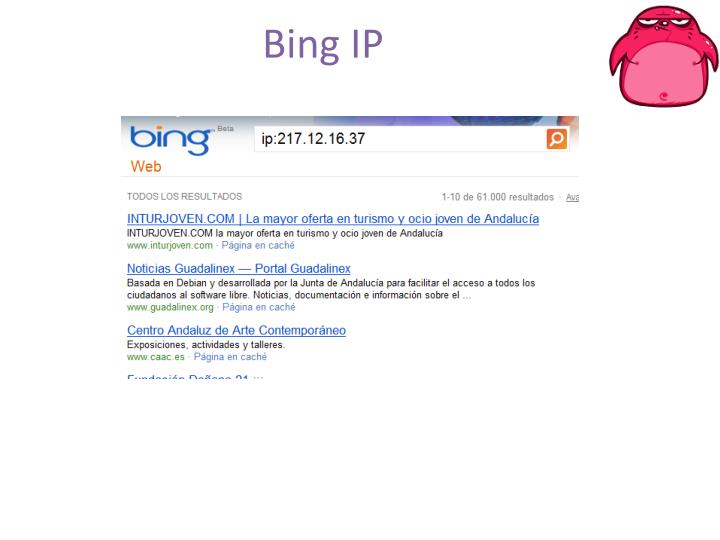 Bing IP