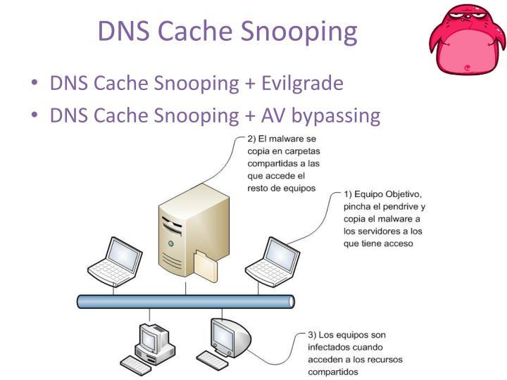 DNS Cache
