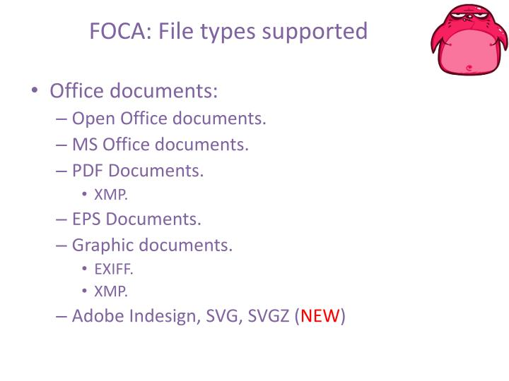 FOCA: File types supported