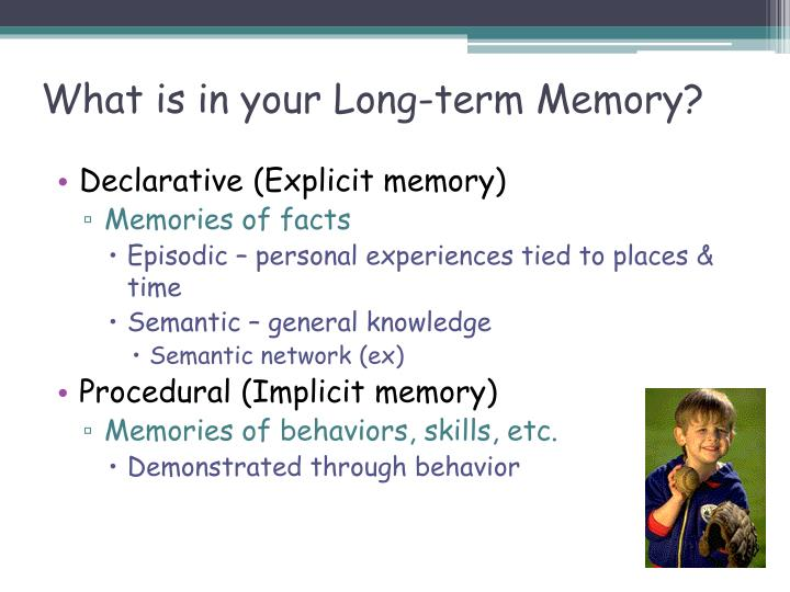 What is in your Long-term Memory?