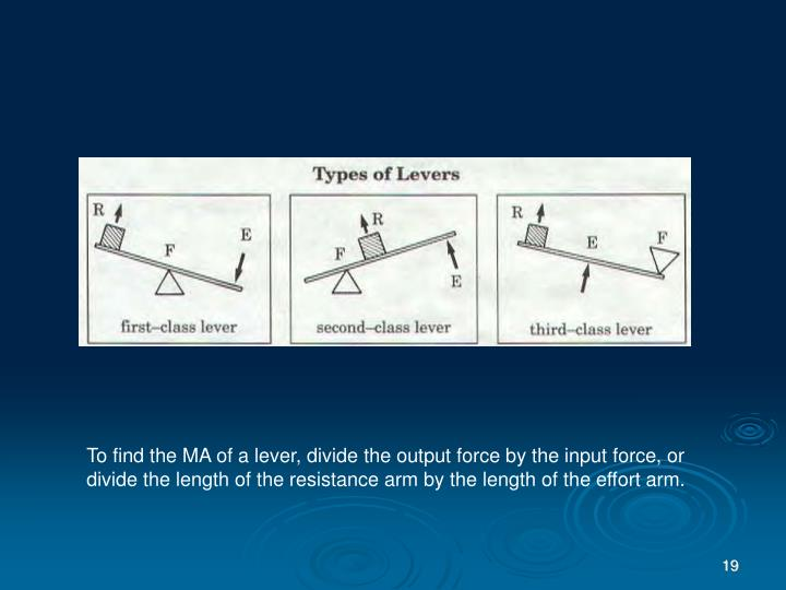 To find the MA of a lever, divide the output force by the input force, or divide the length of the resistance arm by the length of the effort arm.