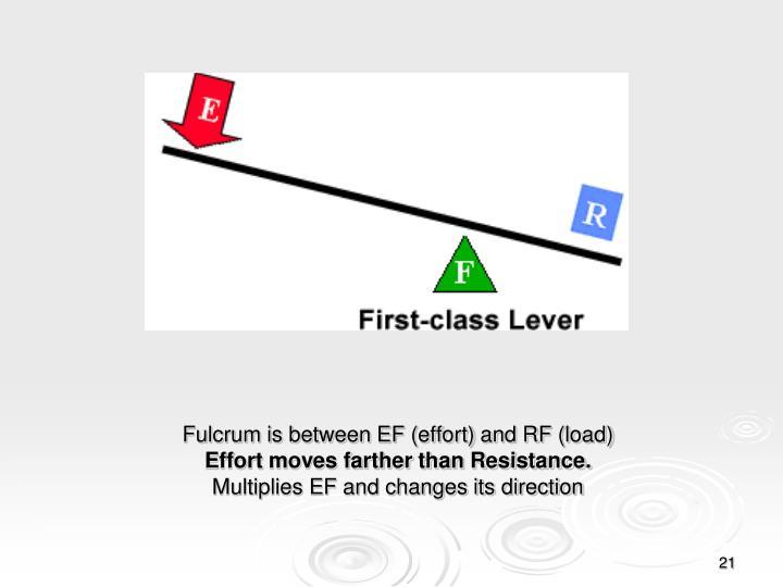 Fulcrum is between EF (effort) and RF (load)