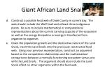 giant african land snail2