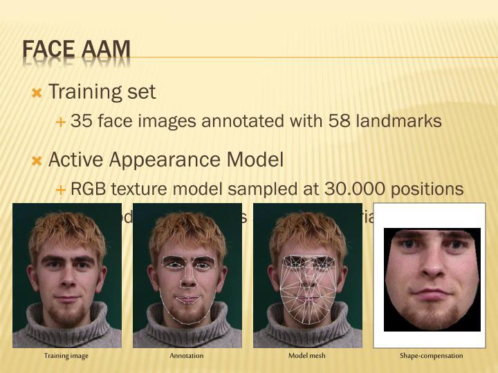Face AAM