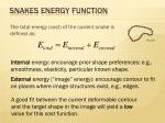 snakes energy function