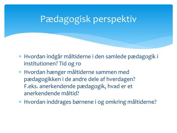 Pædagogisk perspektiv
