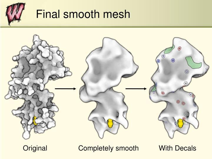 Final smooth mesh