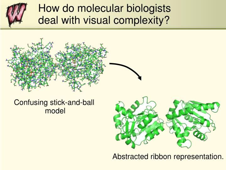 How do molecular biologists deal with visual complexity?