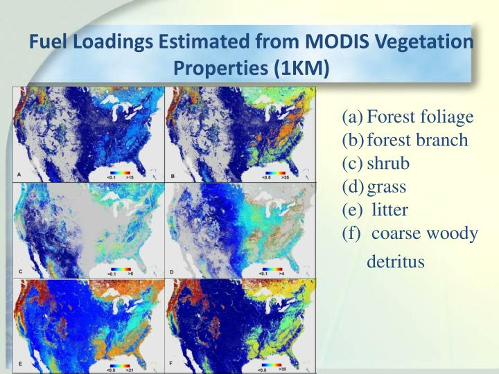 Fuel Loadings Estimated from MODIS Vegetation Properties (1KM)