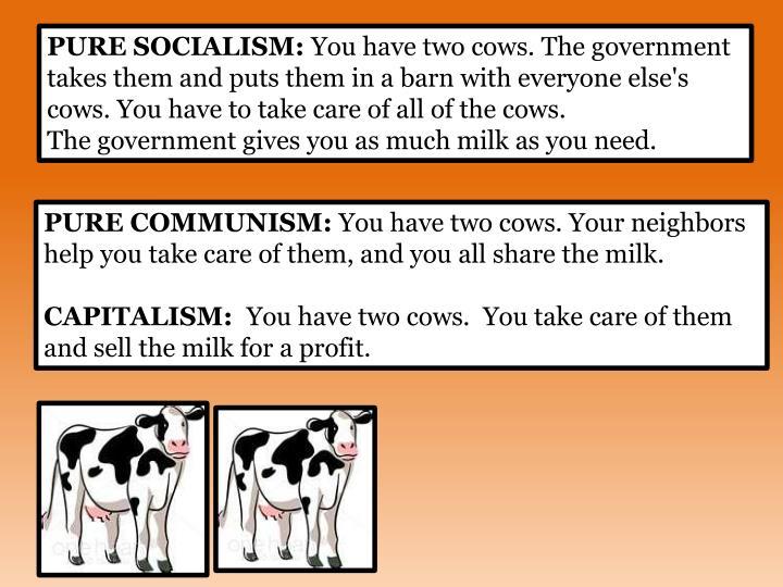 PURE SOCIALISM:
