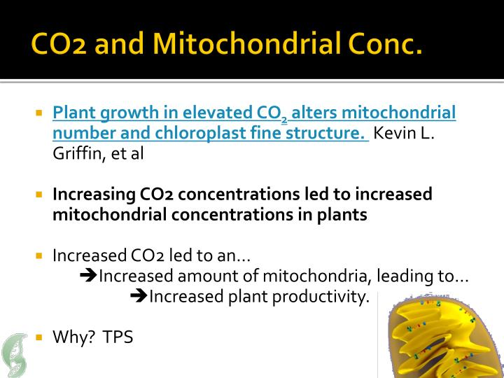 CO2 and Mitochondrial Conc.