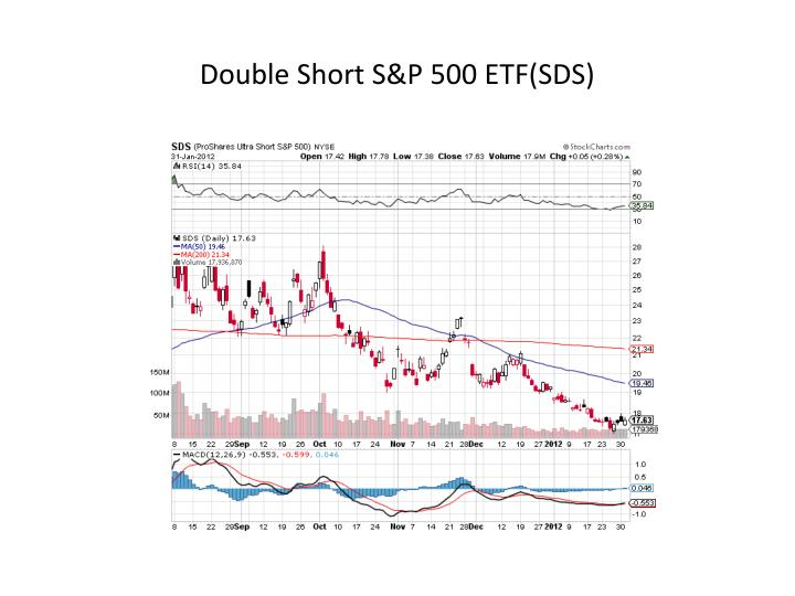Double Short S&P 500 ETF(SDS)