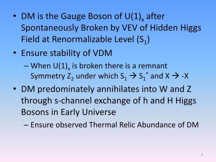 DM is the Gauge Boson of U(1)