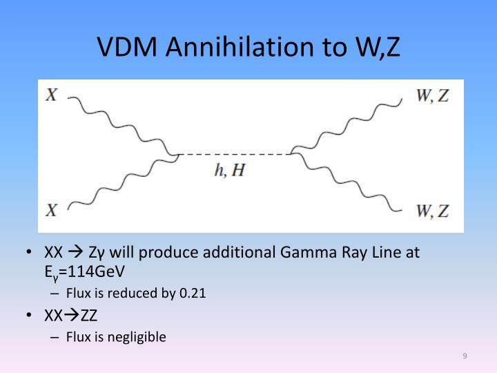 VDM Annihilation to W,Z