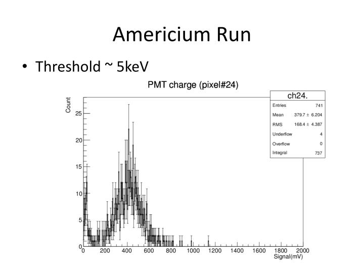 Americium Run