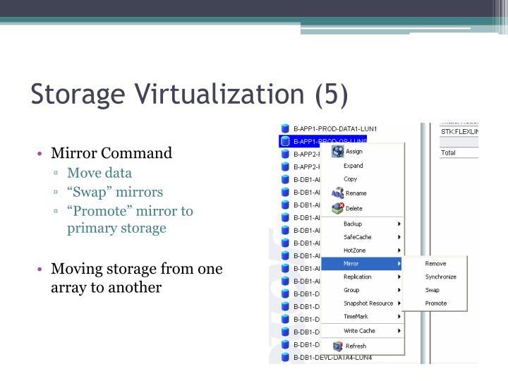 Storage Virtualization (5)