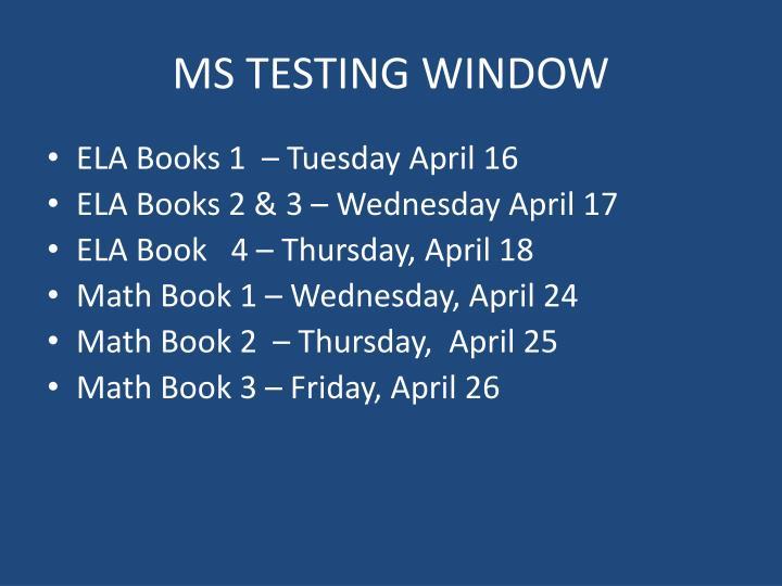 MS TESTING WINDOW