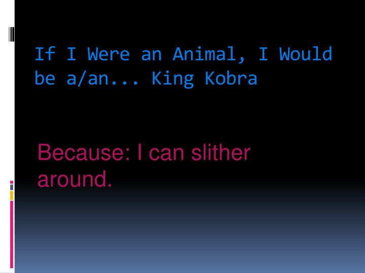 If I Were an Animal, I Would be a/an