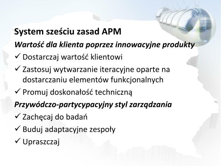 System szeciu zasad APM