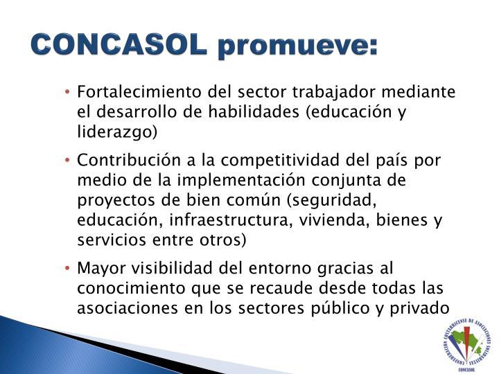 CONCASOL promueve: