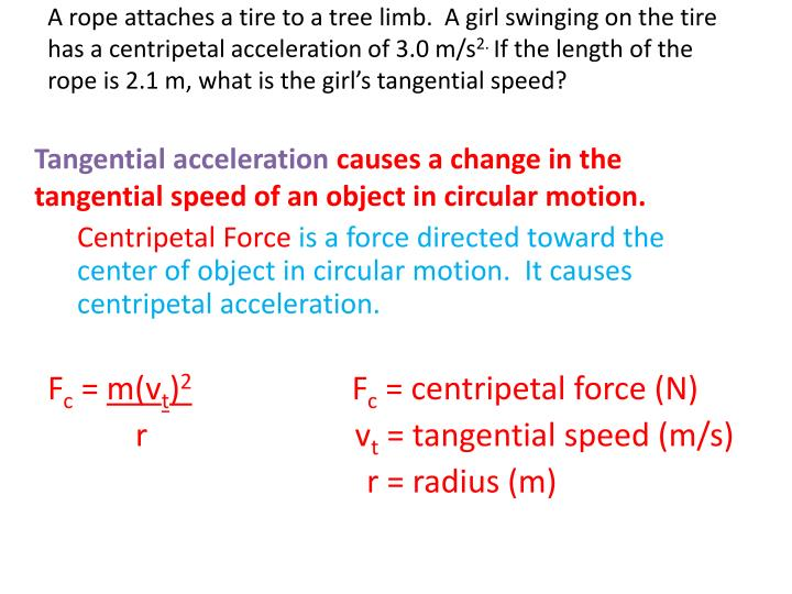 A rope attaches a tire to a tree limb.  A girl swinging on the tire has a centripetal acceleration of 3.0 m/s