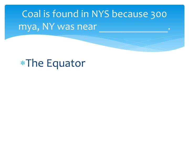 Coal is found in NYS because 300