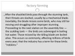 factory farming4