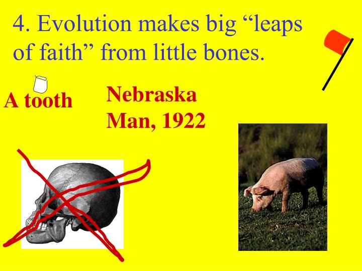 "4. Evolution makes big ""leaps of faith"" from little bones."