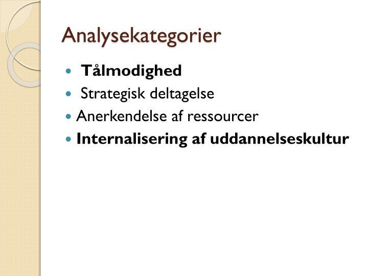 Analysekategorier
