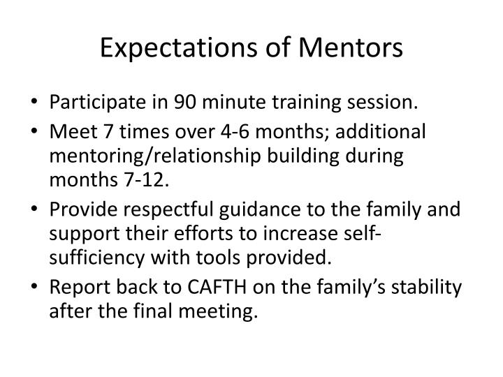 Expectations of Mentors