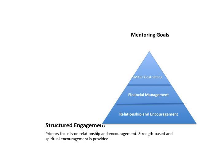 Mentoring Goals