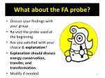 what about the fa probe