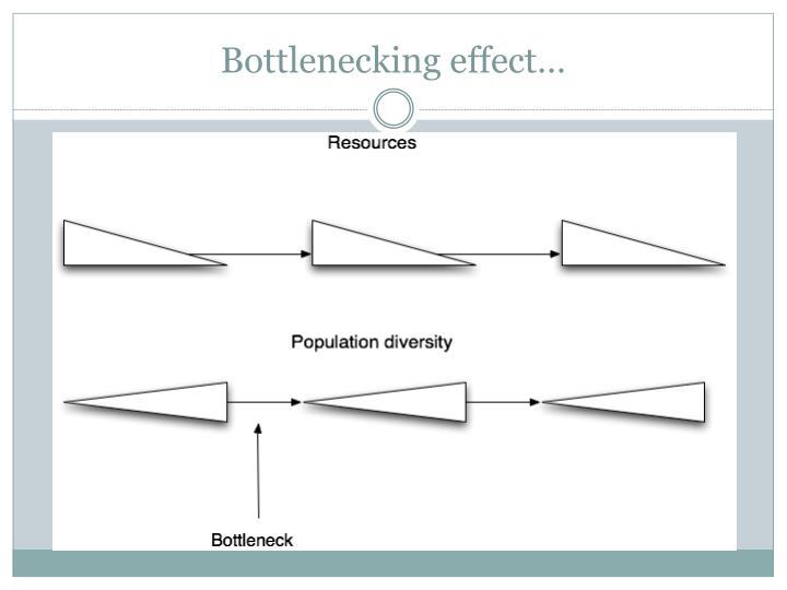 Bottlenecking effect…