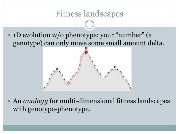Fitness landscapes