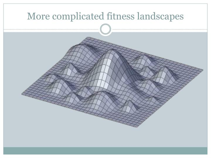 More complicated fitness landscapes