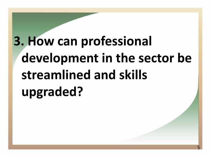 3. How can professional development in the sector be streamlined and skills upgraded?