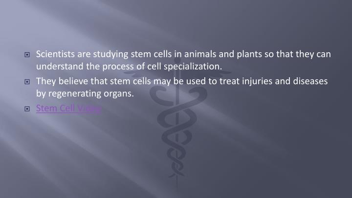 Scientists are studying stem cells in animals and plants so that