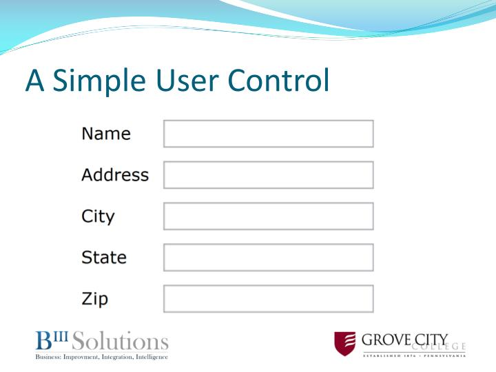 A Simple User Control