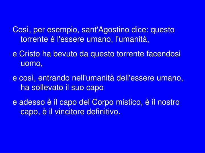 Così, per esempio, sant'Agostino dice: questo torrente è l'essere umano, l'umanità,