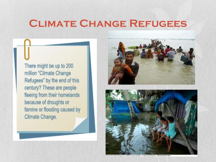 Climate Change Refugees