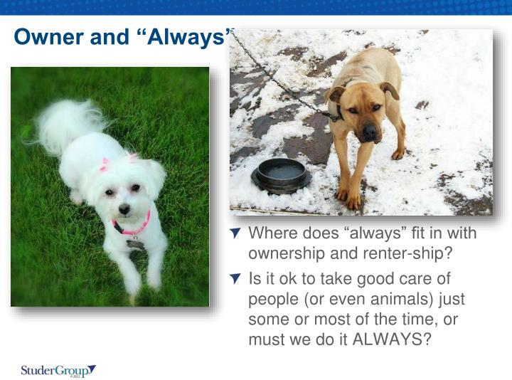 """Owner and """"Always"""""""